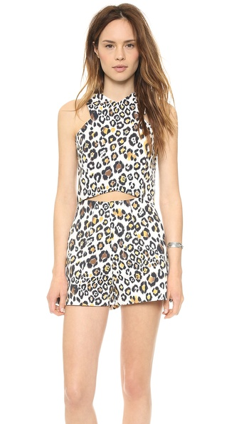 Line & Dot Leopard Crop Top