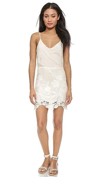 Kupi LIV haljinu online i raspordaja za kupiti Liv Arie Cami Dress - Ivory online