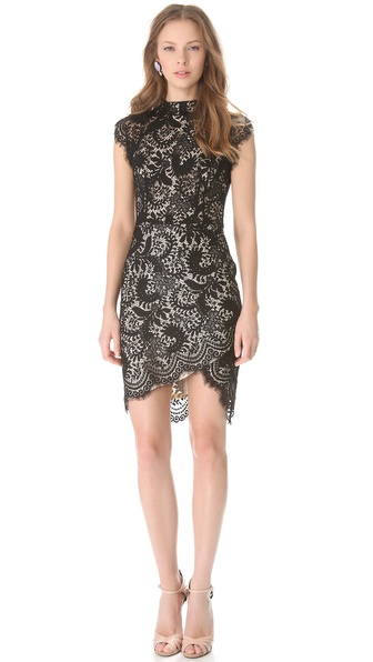Lover Sara Lace Sheath Dress