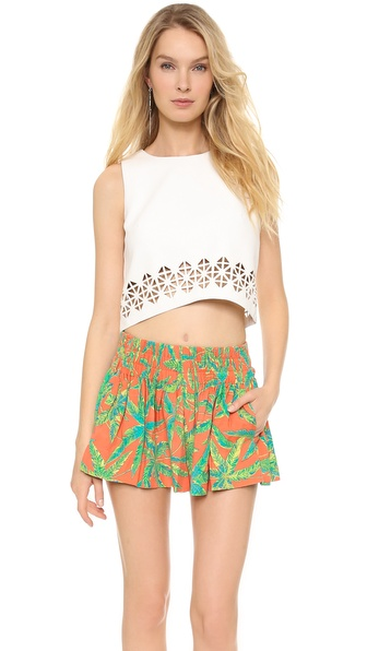 Lovers + Friends Monica Rose Lucia Crop Top