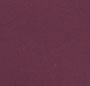 Pansy Purple Multi