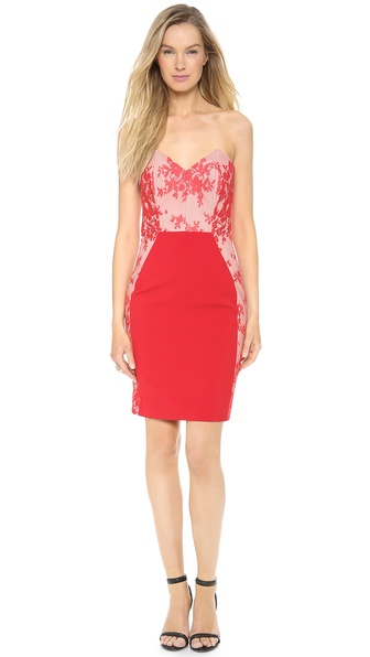 Mason by Michelle Mason Corset Lace Dress