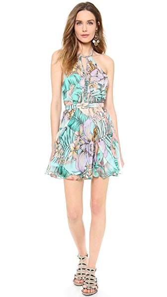 Matthew Williamson Escape Circle Skirt Dress