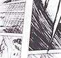 Manga Print
