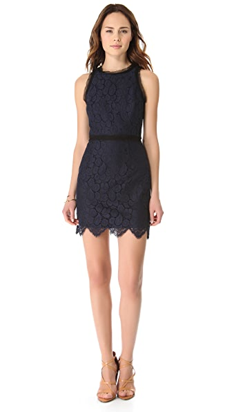 Milly Lace Claudia Dress