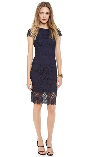 Nicholas Ivy Lace Cap Sleeve dress