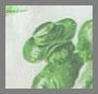 Green/Tan