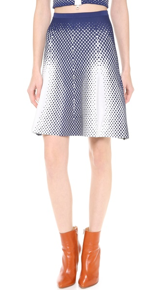 Ohne Titel Point Jacquard Skirt
