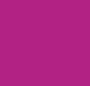 Fuchsia/Petal