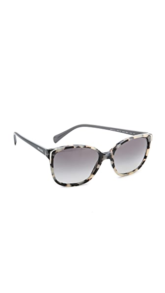 Prada Prada Sleek Sunglasses (Multicolor)
