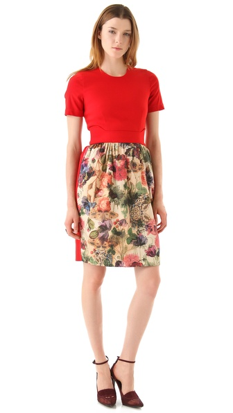 Preen By Thornton Bregazzi Dress with Print Skirt