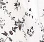 Harlequin Leaf