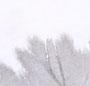 Spiral Grey & White