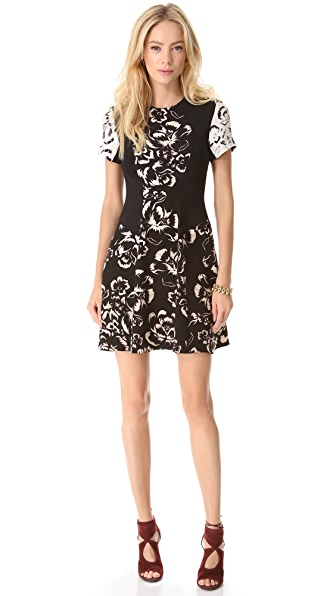 Rebecca Taylor Artisinal Blocked Dress