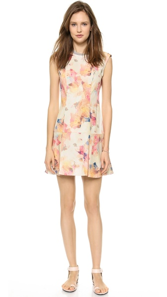 Rebecca Taylor Enchanted Drop Waist Dress