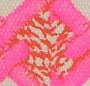 Pink/Orange Print