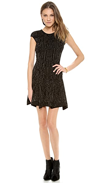 RVN Lace Jacquard Skater Dress