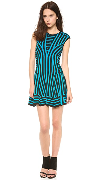 RVN Graphic Stripe Flare Dress