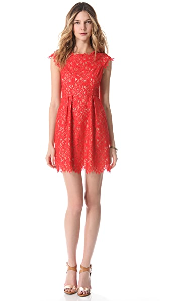 Shoshanna Lace Ceclie Dress