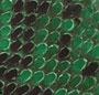 Green Pyton