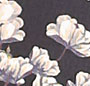Placement Floral Navy