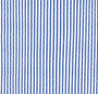 Stripe Blue
