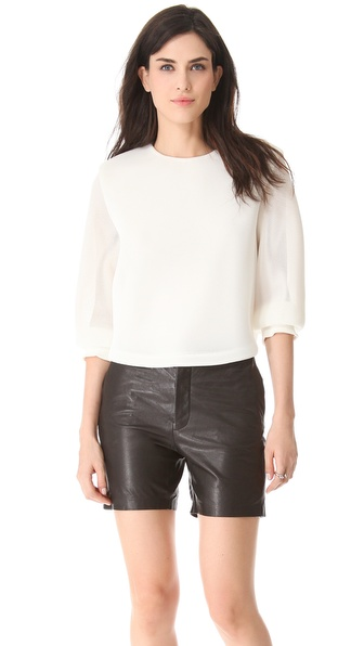 Theyskens' Theory Belcor Fliners Blouse