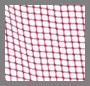 Pink Grid/Fuchsia Trim