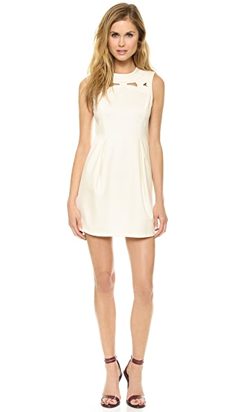 Tibi Sleeveless Embroidered Dress