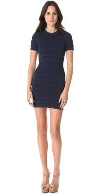 Torn by Ronny Kobo Candela Mini Dress