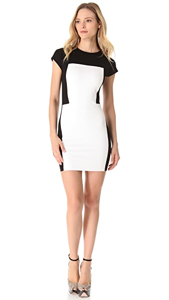Torn by Ronny Kobo Zoara Dress