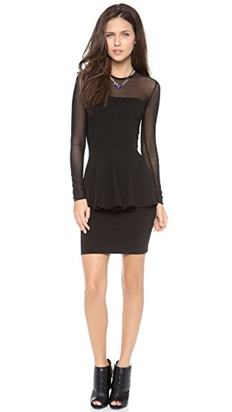 Torn by Ronny Kobo Lima Mesh Dress