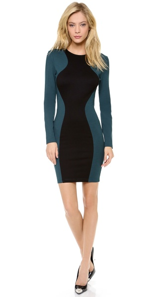Torn by Ronny Kobo Shiran Long Sleeve Dress