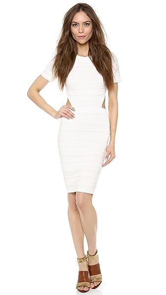 Torn by Ronny Kobo Harlow Short Sleeve Dress