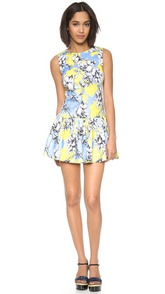 Torn by Ronny Kobo Brady Floral Dress