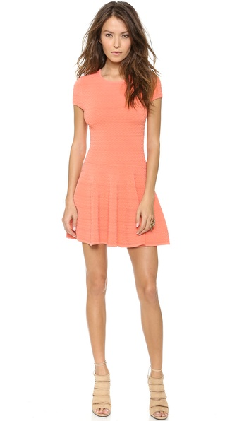 Torn by Ronny Kobo Viviene Dress