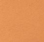 Custom Tan/Custom Tan