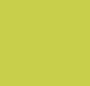 Ginkgo Leaf/Windstorm