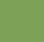 Leaf Green/Bianco
