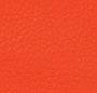 Fire Orange