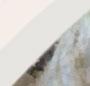 Silver/Labradorite
