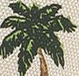 Palm Tree/Sand