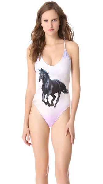 Wildfox Stormy Wildfox One Piece Swimsuit