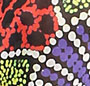 Black/Hibiscus/Neon