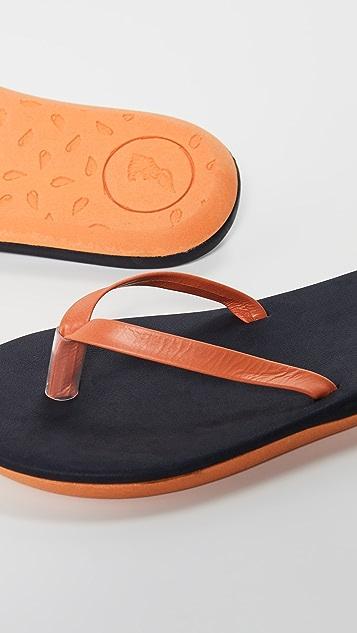 Ancient Greek Sandals Sagionara 夹趾凉鞋
