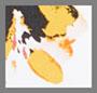 蛋壳白/橙黄色