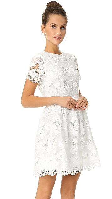 alice + olivia Karen 圆领派对连衣裙
