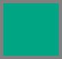 龙舌兰绿色