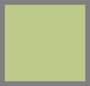 绿色/银色