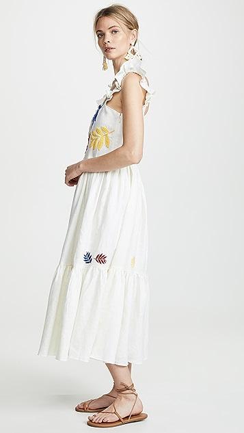 Carolina K Nika 连衣裙